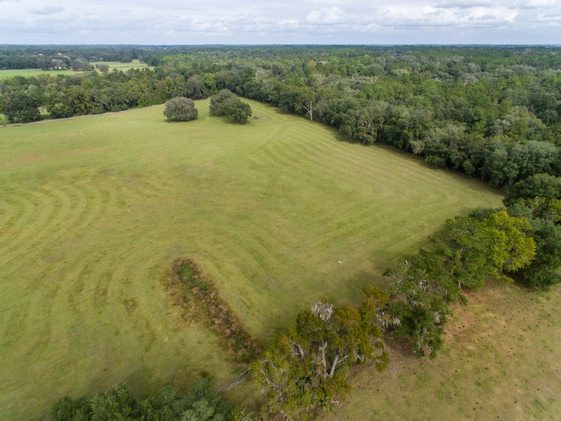 30-acres-open-land-11-4-2019-11