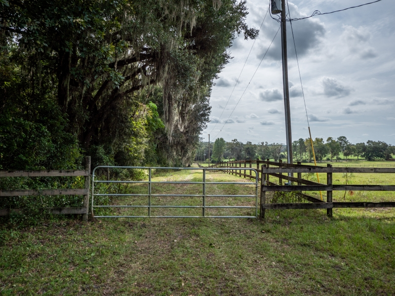 30-acres-open-land-11-4-2019-19