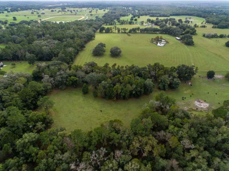 30-acres-open-land-11-4-2019-2
