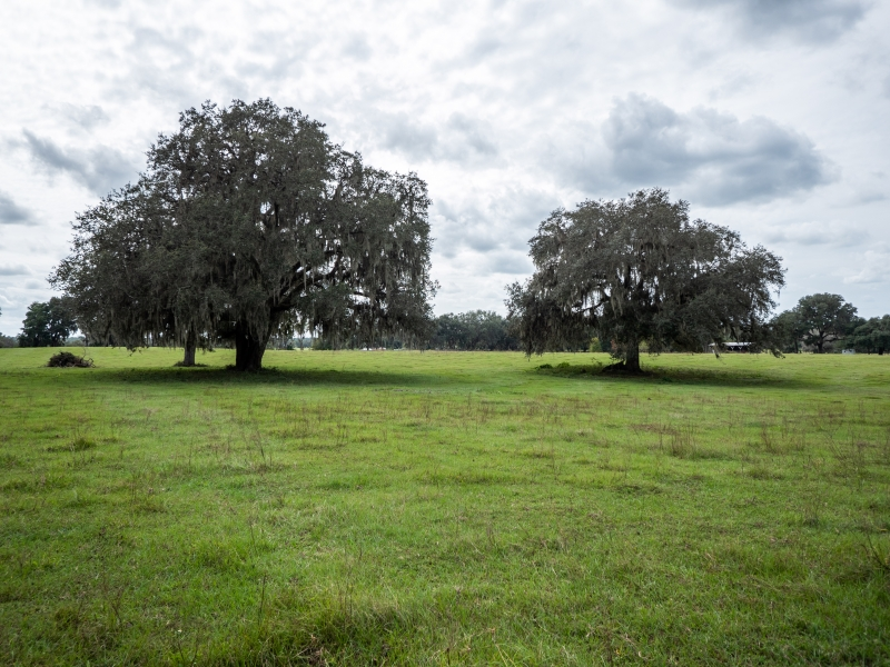 30-acres-open-land-11-4-2019-27