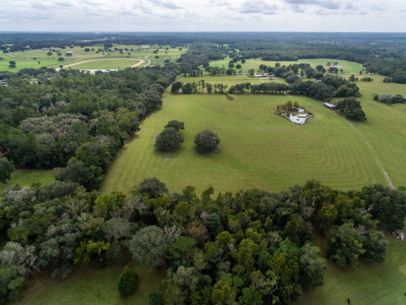 30-acres-open-land-11-4-2019-3