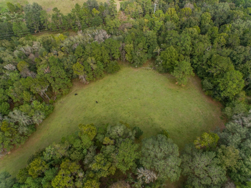 30-acres-open-land-11-4-2019